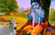 आज कृष्ण जन्माष्टमी धुम धाम सँग मनाउँदै ।